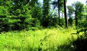 Randonnée Marche LONGPONT - en forêt de Retz_25_Longpont_MF du Buchet_AR - Photo 84
