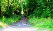 Randonnée Marche LONGPONT - en forêt de Retz_25_Longpont_MF du Buchet_AR - Photo 67