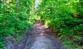 Randonnée Marche LONGPONT - en forêt de Retz_25_Longpont_MF du Buchet_AR - Photo 57