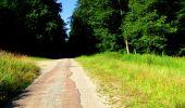 Randonnée Marche LONGPONT - en forêt de Retz_25_Longpont_MF du Buchet_AR - Photo 72