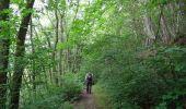 Trail Walk Couvin - Balade au fil des Vallées Couvinoise - Photo 1
