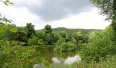Trail Walk Couvin - Balade au fil des Vallées Couvinoise - Photo 3