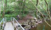 Trail Walk Couvin - Balade au fil des Vallées Couvinoise - Photo 2