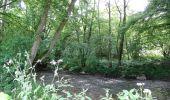 Trail Walk Couvin - Balade au fil des Vallées Couvinoise - Photo 6