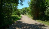 Randonnée Marche CHATEL-GUYON - Chazeron sans souci - Photo 2