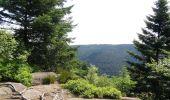 Randonnée Marche DABO - Balade au Col de la Schleif - Photo 6