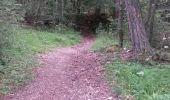 Trail Walk LE CASTELLARD-MELAN - Crête et sommet de Géruen - Photo 28