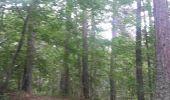 Trail Walk LE CASTELLARD-MELAN - Crête et sommet de Géruen - Photo 27