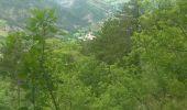 Trail Walk LE CASTELLARD-MELAN - Crête et sommet de Géruen - Photo 23
