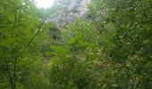 Trail Walk LE CASTELLARD-MELAN - Crête et sommet de Géruen - Photo 20