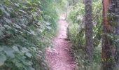 Trail Walk LE CASTELLARD-MELAN - Crête et sommet de Géruen - Photo 17