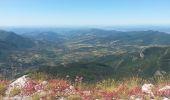 Trail Walk LE CASTELLARD-MELAN - Crête et sommet de Géruen - Photo 4