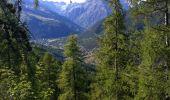 Trail Mountain bike LES VIGNEAUX - les vigneaux  chemin des vaches - Photo 1