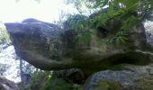 Trail Walk NEMOURS - 3pi-140805 Nemours-RocherVert - Photo 2