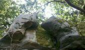 Trail Walk NEMOURS - 3pi-140805 Nemours-RocherVert - Photo 4