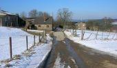 Randonnée Cheval Manhay - Trois-Ponts Ferme Bodson Vers Malempré Ferme St-Martin - Photo 10
