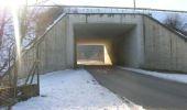Randonnée Cheval Manhay - Trois-Ponts Ferme Bodson Vers Malempré Ferme St-Martin - Photo 8