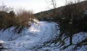 Randonnée Cheval Manhay - Trois-Ponts Ferme Bodson Vers Malempré Ferme St-Martin - Photo 5