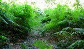 Randonnée Marche LONGPONT - en forêt de Retz_27_Longpont_Montgobert_Puiseux_AR - Photo 36