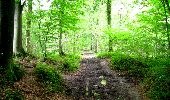 Trail Walk LONGPONT - en forêt de Retz_27_Longpont_Montgobert_Puiseux_AR - Photo 1