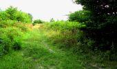 Randonnée Marche LONGPONT - en forêt de Retz_27_Longpont_Montgobert_Puiseux_AR - Photo 10