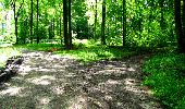 Randonnée Marche LONGPONT - en forêt de Retz_27_Longpont_Montgobert_Puiseux_AR - Photo 89