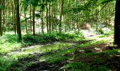 Trail Walk LONGPONT - en forêt de Retz_27_Longpont_Montgobert_Puiseux_AR - Photo 90
