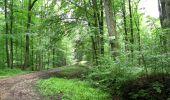Randonnée Marche LONGPONT - en forêt de Retz_27_Longpont_Montgobert_Puiseux_AR - Photo 32