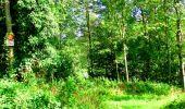 Randonnée Marche LONGPONT - en forêt de Retz_27_Longpont_Montgobert_Puiseux_AR - Photo 74