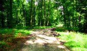 Trail Walk LONGPONT - en forêt de Retz_27_Longpont_Montgobert_Puiseux_AR - Photo 100
