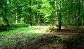 Trail Walk LONGPONT - en forêt de Retz_27_Longpont_Montgobert_Puiseux_AR - Photo 87