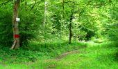 Trail Walk LONGPONT - en forêt de Retz_27_Longpont_Montgobert_Puiseux_AR - Photo 74