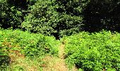 Randonnée Marche LONGPONT - en forêt de Retz_27_Longpont_Montgobert_Puiseux_AR - Photo 39