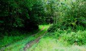 Trail Walk LONGPONT - en forêt de Retz_27_Longpont_Montgobert_Puiseux_AR - Photo 139