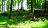 Trail Walk LONGPONT - en forêt de Retz_27_Longpont_Montgobert_Puiseux_AR - Photo 99