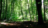 Randonnée Marche LONGPONT - en forêt de Retz_27_Longpont_Montgobert_Puiseux_AR - Photo 135