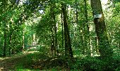 Randonnée Marche LONGPONT - en forêt de Retz_27_Longpont_Montgobert_Puiseux_AR - Photo 28