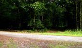 Randonnée Marche LONGPONT - en forêt de Retz_27_Longpont_Montgobert_Puiseux_AR - Photo 16