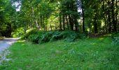 Trail Walk LONGPONT - en forêt de Retz_27_Longpont_Montgobert_Puiseux_AR - Photo 53