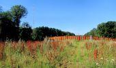 Trail Walk LONGPONT - en forêt de Retz_27_Longpont_Montgobert_Puiseux_AR - Photo 143