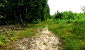 Randonnée Marche LONGPONT - en forêt de Retz_27_Longpont_Montgobert_Puiseux_AR - Photo 162