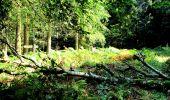 Trail Walk LONGPONT - en forêt de Retz_27_Longpont_Montgobert_Puiseux_AR - Photo 47