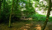 Trail Walk LONGPONT - en forêt de Retz_27_Longpont_Montgobert_Puiseux_AR - Photo 42