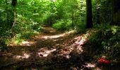 Trail Walk LONGPONT - en forêt de Retz_27_Longpont_Montgobert_Puiseux_AR - Photo 24