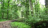 Randonnée Marche LONGPONT - en forêt de Retz_27_Longpont_Montgobert_Puiseux_AR - Photo 31