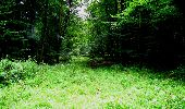 Trail Walk LONGPONT - en forêt de Retz_27_Longpont_Montgobert_Puiseux_AR - Photo 77