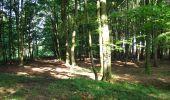 Randonnée Marche LONGPONT - en forêt de Retz_27_Longpont_Montgobert_Puiseux_AR - Photo 43