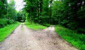 Trail Walk LONGPONT - en forêt de Retz_27_Longpont_Montgobert_Puiseux_AR - Photo 98
