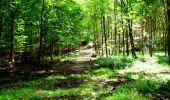 Trail Walk LONGPONT - en forêt de Retz_27_Longpont_Montgobert_Puiseux_AR - Photo 91