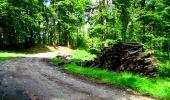 Trail Walk LONGPONT - en forêt de Retz_27_Longpont_Montgobert_Puiseux_AR - Photo 93